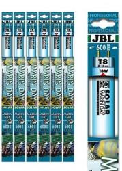 Jbl - JBL Solar Marin Day T8 18W 590 mm 15000 K