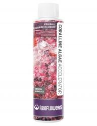 ReeFlowers - Reeflowers Coralline Algae Accelerator 500 ML