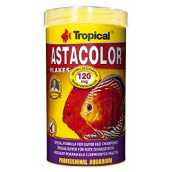 Tropical - Tropical Asta Colour Discus 100 Gr.