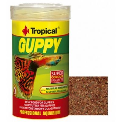 Tropical Guppy Pul Lepistes Yemi 100 ML